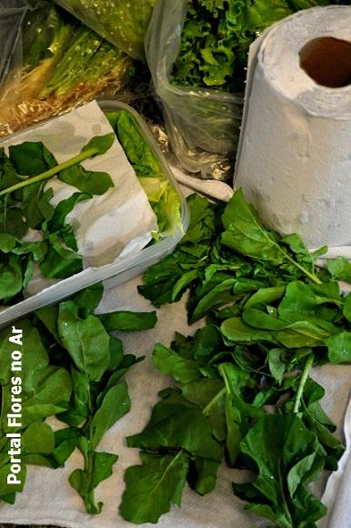 conservar saladas