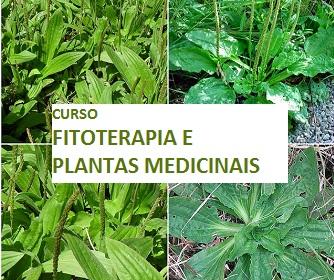 CURSO-FITOTERAPIA-E-PLANTAS-MEDICINAIS