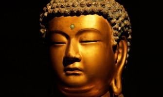 Grupo de Estudos 'Meditação e Budismo' toda segunda-feira no Luminaris
