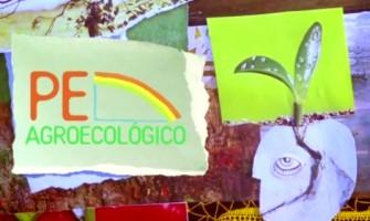 Conheça o Pernambuco Agroecológico!