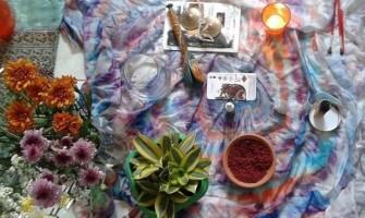 Vivência Criativa com os Florais da Amazônia dia 16/7 no Lapis Lazuli