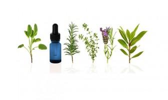 Inscrições gratuitas para o 2º Congresso Online de Aromaterapia