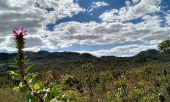 Sociedade pede ampliação do Parque Nacional da Chapada dos Veadeiros