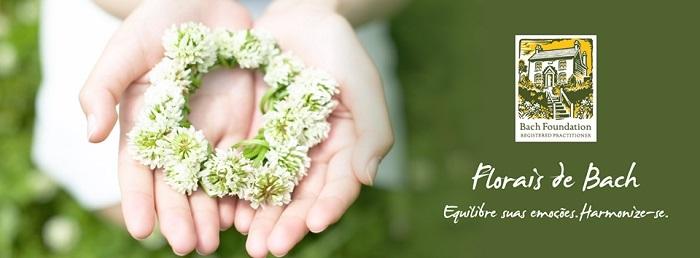 florais de bach katia abreu