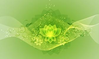 Curso Online de Terapias Holísticas