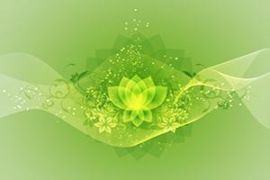 curso terapias holisticas