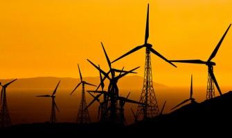 """Propaganda enganosa como estratégia dos """"negócios do vento"""""""