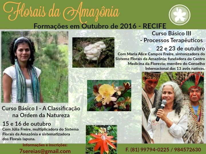 florais da amazonia recife