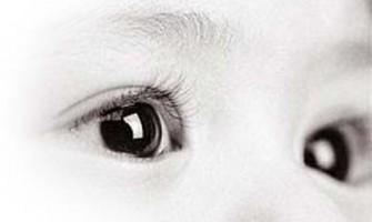 O Nosso Olhar