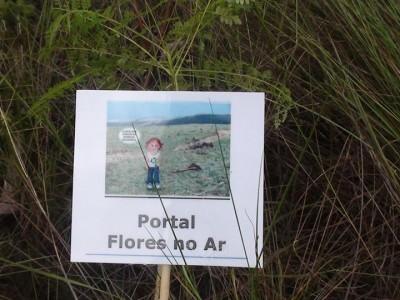 Campanha Plante uma Árvore realiza plantios de mudas do Cerrado nas áreas devastadas da Serra da Gandarela (MG)