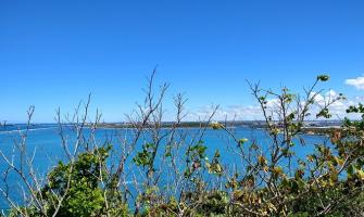 Suape: Belo Monte esquecida