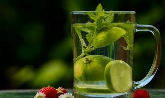 Dieta Detox – método para perder peso de forma rápida, natural e saudável