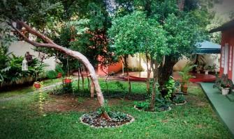Espaço Circular oferece local para cursos e vivências no Recife