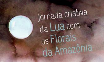 [AGENDA PE] Jornada Criativa da Lua com os Florais da Amazônia nesta sexta!