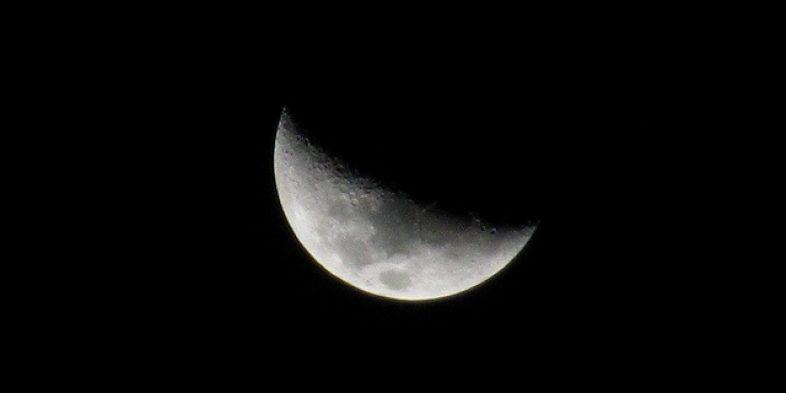 [LUNÁRIO] Lua Crescente – broto, movimento, resistência