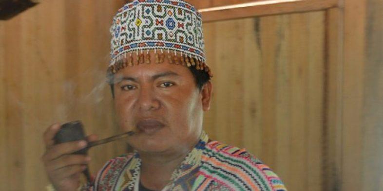 'A Sagrada Medicina da Ayahuasca', por Panshin Nima