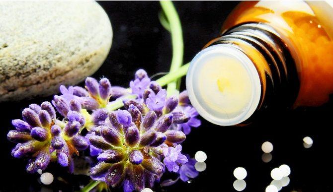 [AGENDA PE] Curso de Homeopatia na Saúde Humana e no Meio Ambiente. Próximo módulo: dias 8 e 9 de junho!