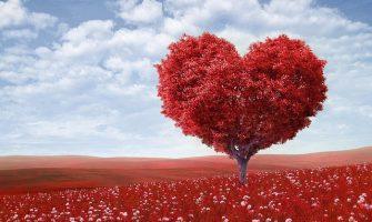 [INTEGRANDO SAÚDE] Amor como Caminho Direto – Parte 6:  Amar a Deus através de um relacionamento erótico