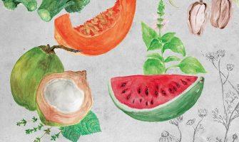 [AGENDA PE] Livro 'O grão e a luz', sobre alimentação orgânica, será lançado na próxima quarta-feira no Recife