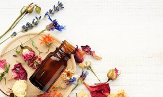 [AGENDA PE] Curso de Herbalismo – Nível I tem início dias 8 e 9 de fevereiro, em Aldeia