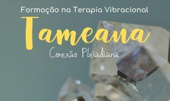 [AGENDA PE] Formação na Terapia Vibracional Tameana, dias 8 e 9/2, no Recife