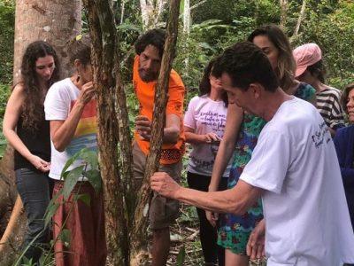 [AGENDA PE] Curso de Homeopatia nos Sistemas Vivos começa dia 21/3 no Recife
