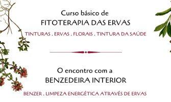 [AGENDA PE] Cursos de Fitoterapia e de Benzimento, com Lenísia Septímio, em março, no Recife
