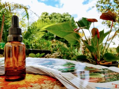 [AGENDA] Terapeuta Morgana Maria oferece atendimentos com Florais da Amazônia e Reiki